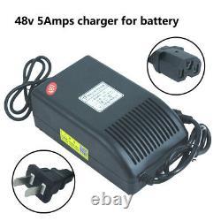 48v 20ah LiFePO4 Battery Pack Power for 1000Watt Ebike Golf Cart + Charger + BMS