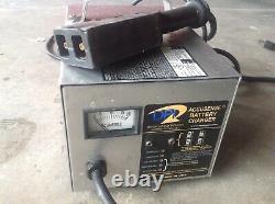 Ezgo dpi powerwise 21a 21 amp battery charger 36v 36 volt golf cart